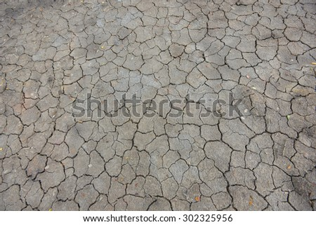 Dry, cracked dirt texture