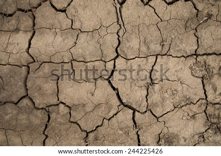 Dry cracked earth. Close up. Whole background.  - stock photo