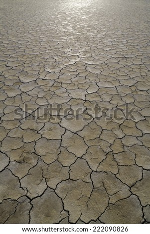Dry cracked earth in the desert - stock photo