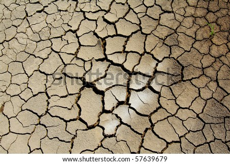 Dry cracked soil - stock photo