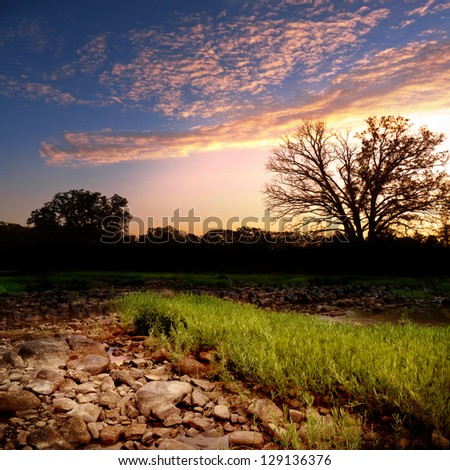 Dry creek bed in remote area of Oklahoma. - stock photo