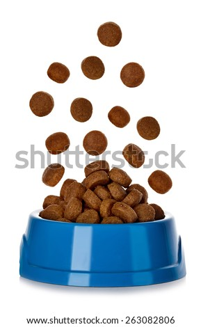 Dry dog food in bowl isolated on white - stock photo