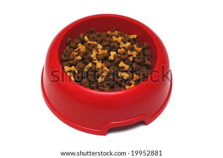 Dry feed for dogs in a bowl on a white background - stock photo