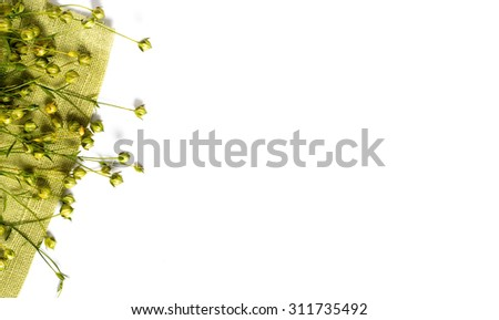 dry flax plant capsules on napkin. View from above. - stock photo