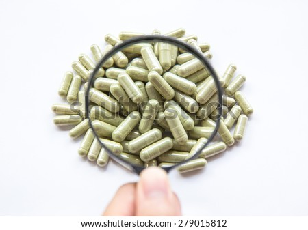 Dry herb Andrographis paniculata powder  in capsule