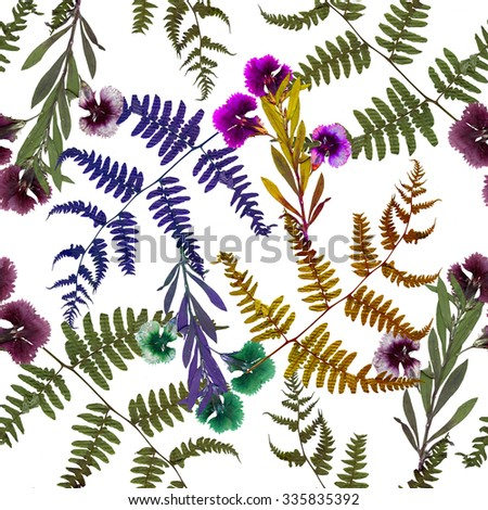 Dry herbarium plants seamless pattern on white background with flowers and leaves - stock photo