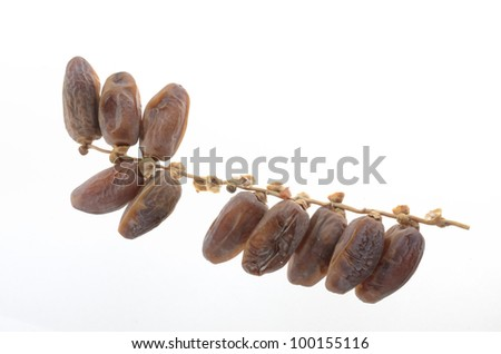 dry intapalum - stock photo