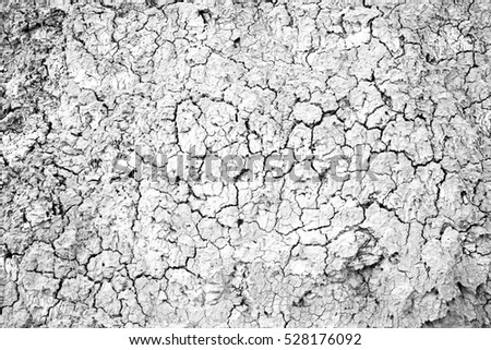 Dry land in a field, detail of a drought, climate damage, catastrophe, textured background