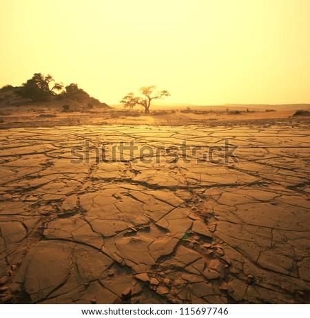 dry landscape - stock photo