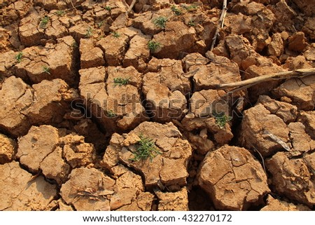Dry mud, cracked soil and dried twigs in drought.Selective focus. - stock photo