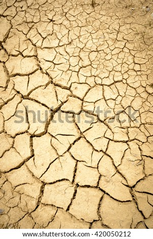 Dry mud with many cracks and fissures on the surface