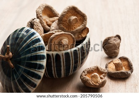 Dry Mushrooms isolated on white background. Selective focus - stock photo