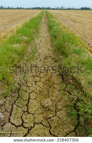 Dry paddy canal during dry season - stock photo