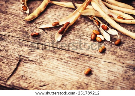 Dry red beans out of pods on old wooden table background - stock photo