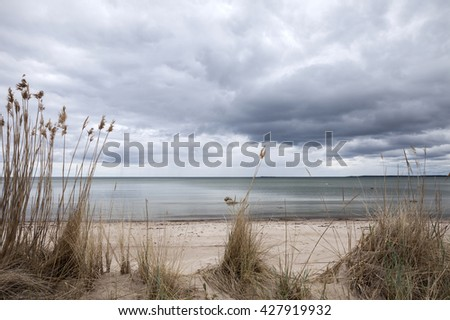 Dry reed at Baltic coast at cloudy spring day.  - stock photo