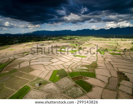 Dry rice field from top view northern Lampang, Thailand - stock photo