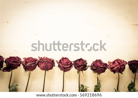 dry roses in vintage style