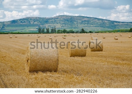 Dry rural field with hay stacks - stock photo