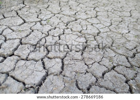 dry soil cracked earth texture, The Netherlands - stock photo