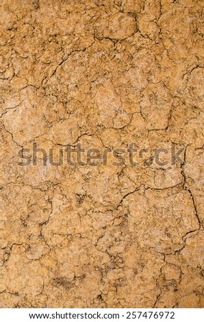 Dry soil surface  - stock photo