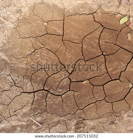 Dry soil with crack background  - stock photo