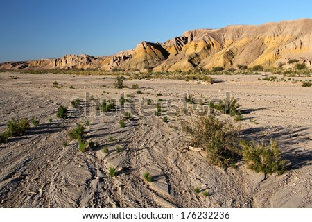 Dry Wash in Big Bend National Park, American Southwest - stock photo