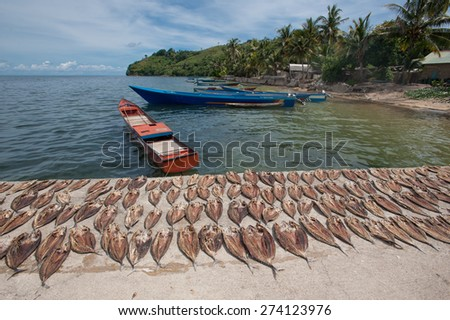 Drying fish on the dock with local traditional boats in the background near the beach of Hatta Island in the Banda Sea. - stock photo