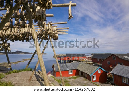 Drying of stockfish on Lofoten islands in Norway with typical red houses by the sea - stock photo