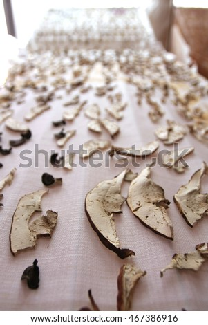 drying porcini