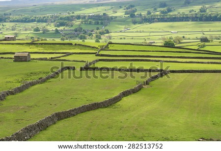 Drystone walls and fields in the Yorkshire Dales