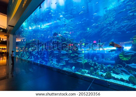 DUBAI, UAE - 1 APRIL 2014: Huge Oceanarium inside Dubai Mall. It is the largest indoor aquarium in the world at a length of 50 meters long and 10 million litres of water. - stock photo