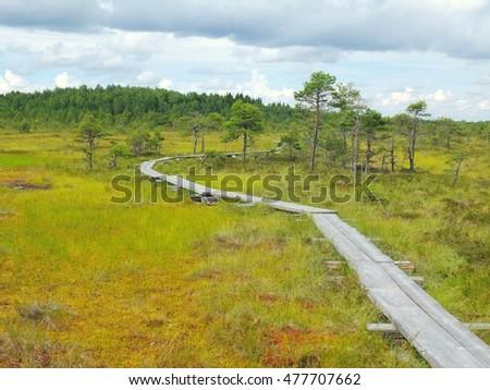 Resultado de imagem para Parque Nacional Torronsuo, Finlândia