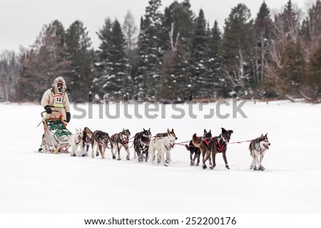 DULUTH MN - JANUARY 27: Shawn McCarty arrives at Trail Center Checkpoint during the Marathon portion of the John Beargrease Sled Dog Race. McCarty finished 10th on January 27, 2015 in Duluth, MN - stock photo
