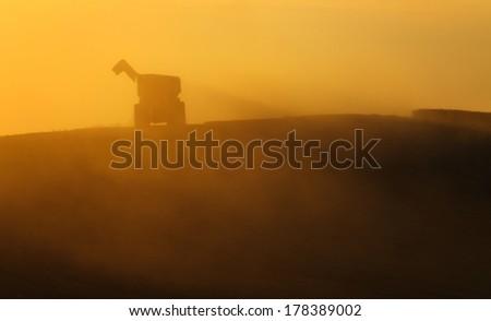 Dump trailer during harvest equipment, receiving grain. - stock photo
