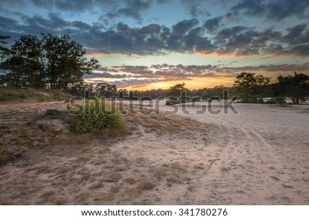 Dune area with shifting Sands in Korte Duinen Nature reserve near Soest, Netherlands