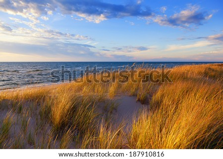 Dune Grass on Lake Michigan. Gold hued dune grass reflects the late day sun on the Lake Michigan shoreline - stock photo