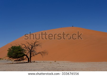Dune 45 in sossusvlei Namibia with dead tree, best of Namibia landscape, Dune 45 is the biggest dune in the world - stock photo