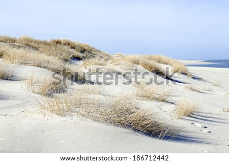 Dune on the island of Sylt, Germany - stock photo
