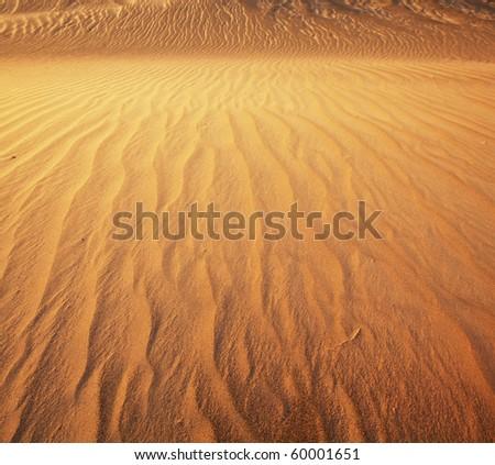 Dune texture - stock photo
