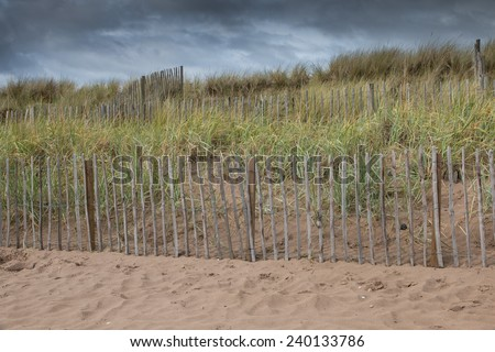 Dunes and beach grass behind a wooden fence to protect the beach of St Andrews, Scotland, from erosion - stock photo