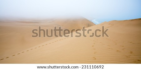 Dunes and Ocean meet, Sandwich harbour, Namibia - stock photo
