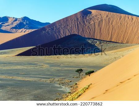 Dunes in Sossusvlei plato of Namib Naukluft National Park - Namibia, South Africa - stock photo