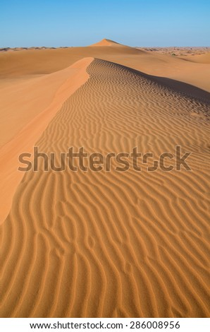 Dunes in the desert.Arid desolate landscape.Footprints in the sand.Structure of waves in the desert sand.Waves of orange sand on top of the dunes. - stock photo