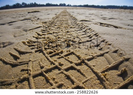 Dunes of Loon and Drunen National Park, Netherlands. March 8, 2015. Close up to a car trail on sand. - stock photo