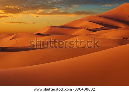 Dunes of Sahara Desert at sunset. Wild nature background. Erg Chebbi, Morocco.