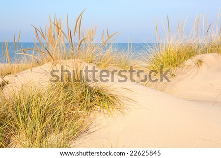 Dunes on Lake Michigan - stock photo