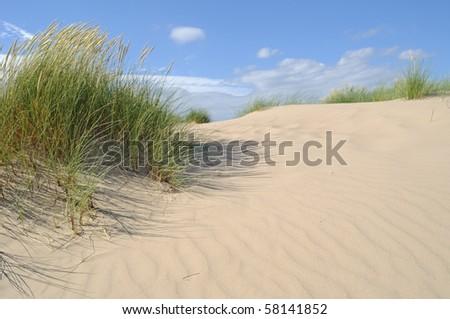 Dunes on the North Sea. - stock photo