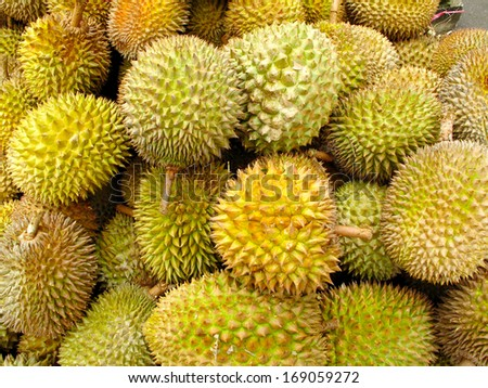 durian king of asia fruit background               - stock photo