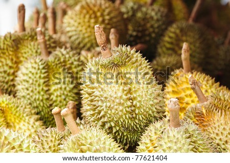 Durians at market - stock photo