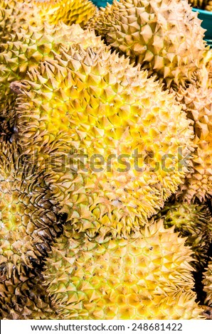 Durians fruits in the market, Thai style fruit, Thailand - stock photo